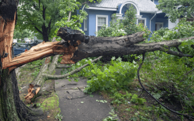 Will Your Homeowners Insurance Be Enough to Protect You?